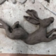 Clay Hare Sculpture for wall