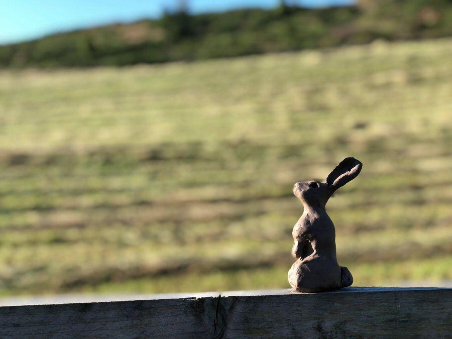 Bunny Clay Sculpt