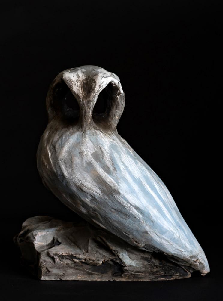 Owl is not as it seems