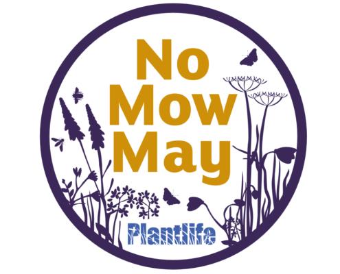 No Mow May